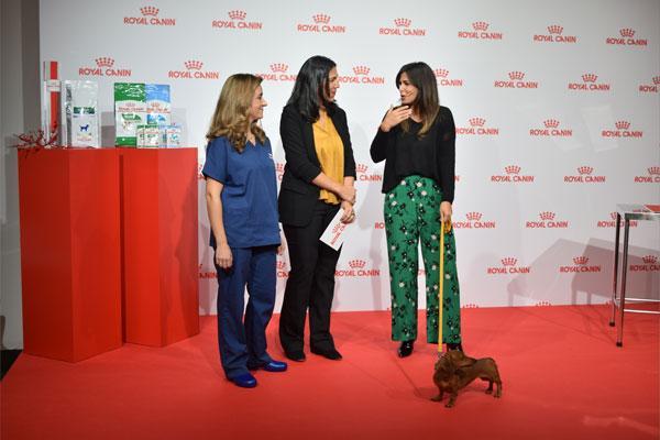 royal canin conciencia sobre el problema del sobrepeso en mascotas