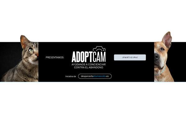 adoptcam la campaa que conciencia sobre la adopcin responsable de mascotas