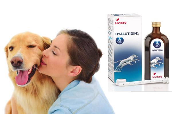 osteoartritis bajo control con hyalutidinsupsup dc