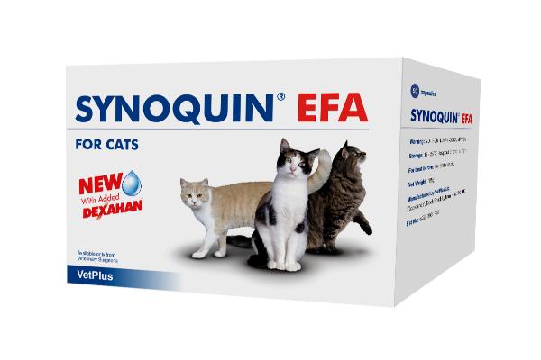 synoquinsupsup efa cat la alternativa condoprotectora para gatos