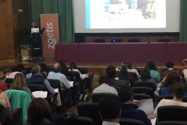 zoetis patrocina una jornada acerca de la terapia del dolor crnico en osteoartritis