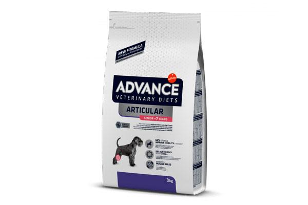 articular senior la dieta para perros con problemas articulares