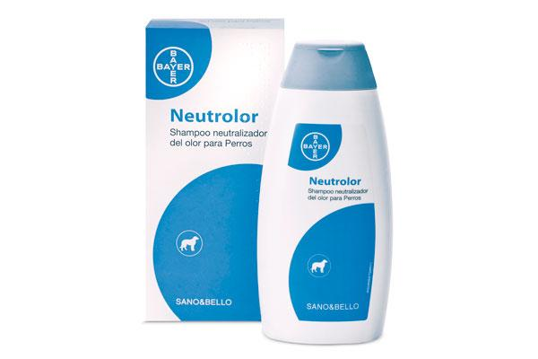shampoo neutrolor el aliado para neutralizar el olor