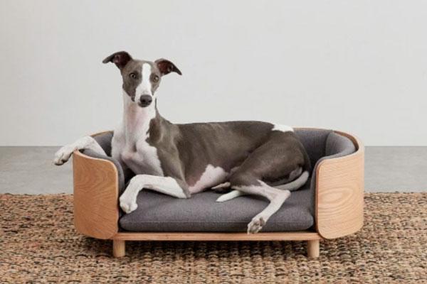 madecom lanza su coleccion de mobiliario y accesorios para mascotas