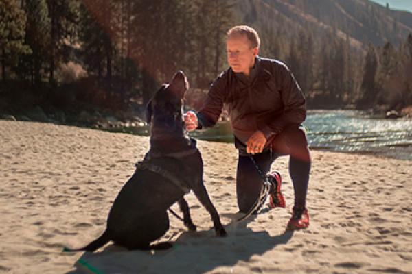 la relacin entre las personas y sus mascotas tiene efectos positivos sobre la salud y el bienestar