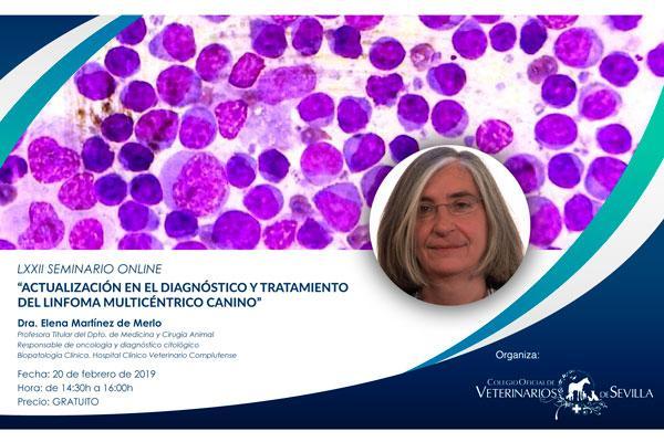 el cov de sevilla pone en marcha un seminario online centrado en el linfoma multicntrico