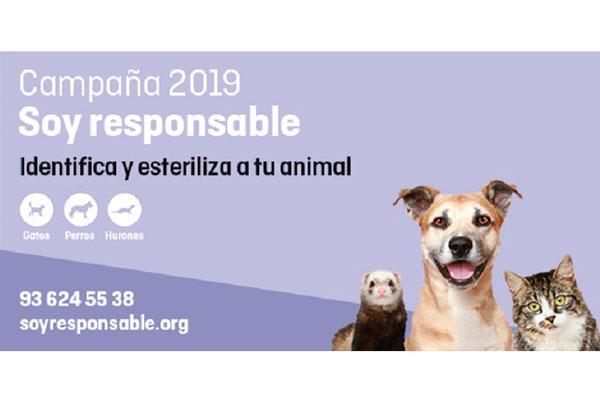 soyresponsable 2019 la campaa para esterilizar e identificar mascotas a precios reducidos