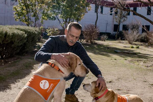 las terapias asistidas con animales de compaa mejoran la conducta de los presos