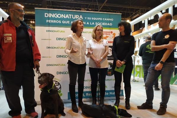 dingonatura presenta su patrulla canina hroes que trabajan para el bien social