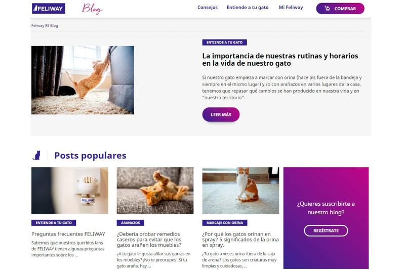 feliwaysupsup presenta su nuevo blog con consejos para propietarios