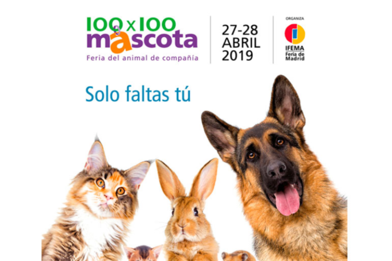todo a punto para 100x100 mascota 2019