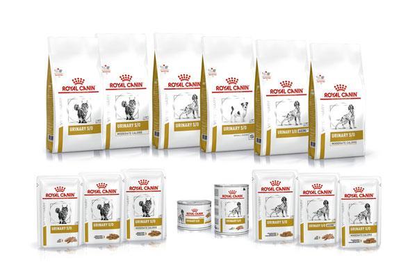 urinary la nueva gama de royal canin destinada a la prevencin y tratamiento de las patologas urinarias