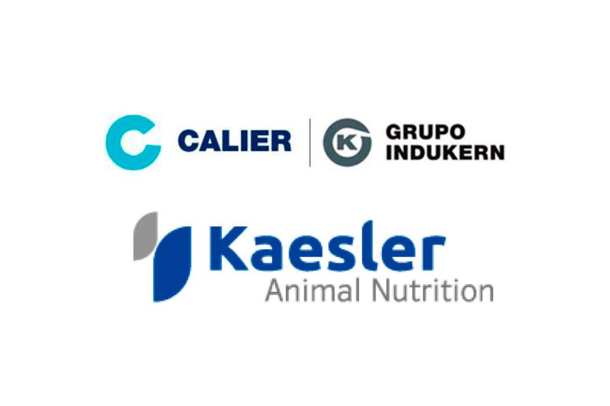 calier distribuira en exclusiva la linea lovit de kaesler nutrition en espana