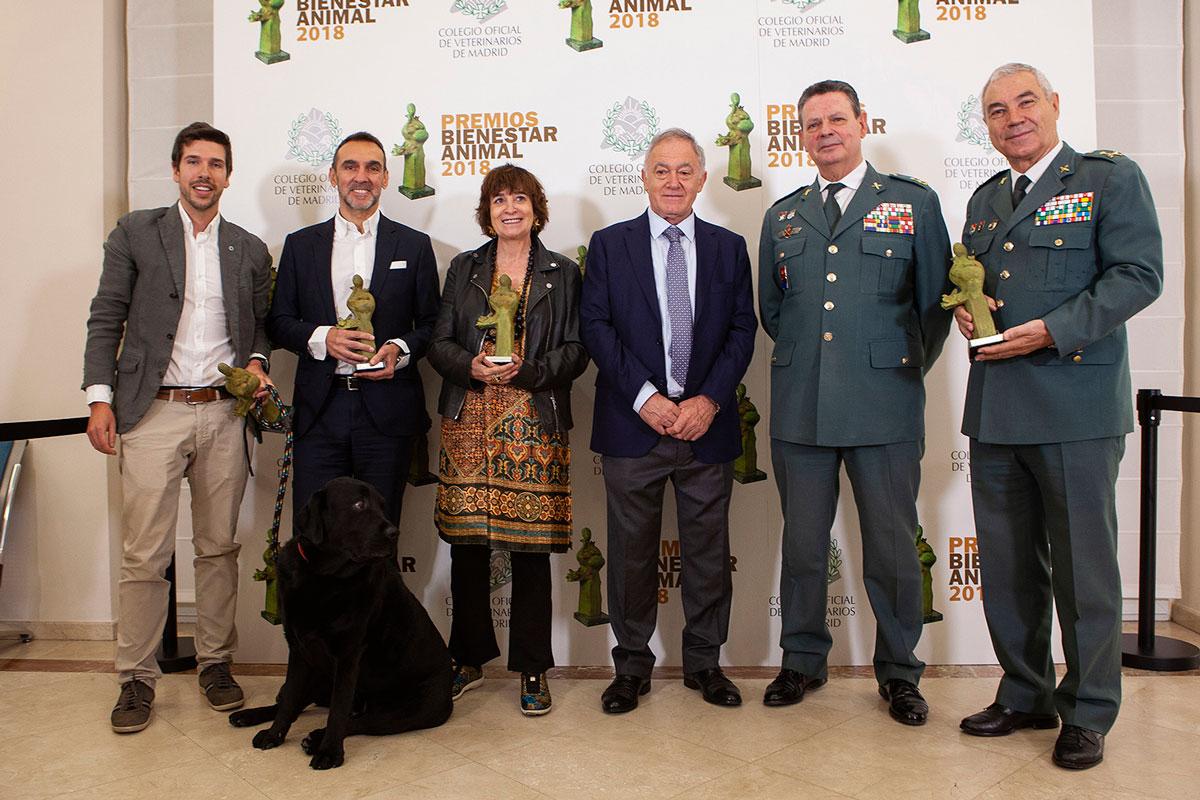los premios bienestar animal reconocen a rosa montero el seprona el perro lass y calidad pascual