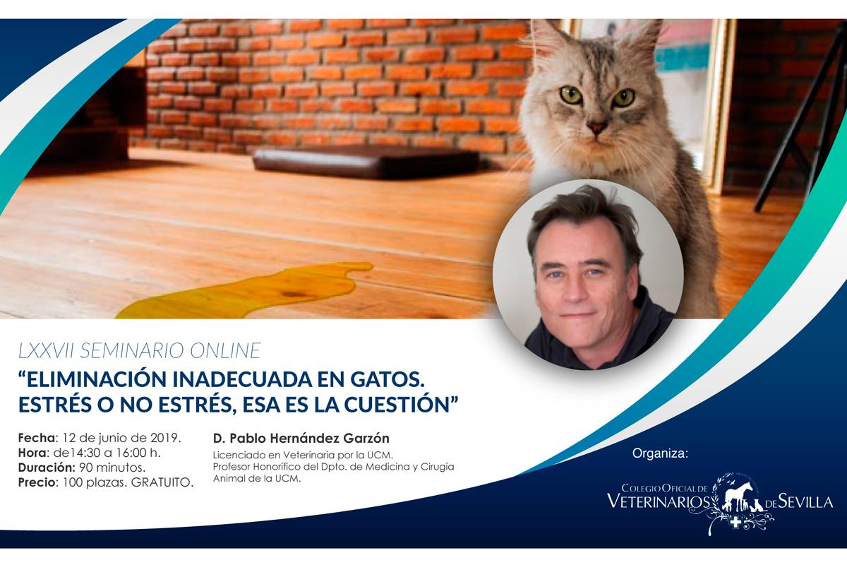la eliminacin inadecuada en gatos centrar el webseminar de junio del cov de sevilla