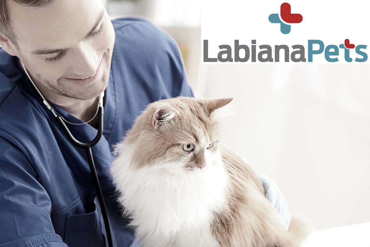 labianapets con y para el veterinario