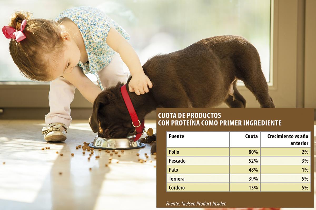 la innovacion revoluciona el mercado de nutricion para mascotas