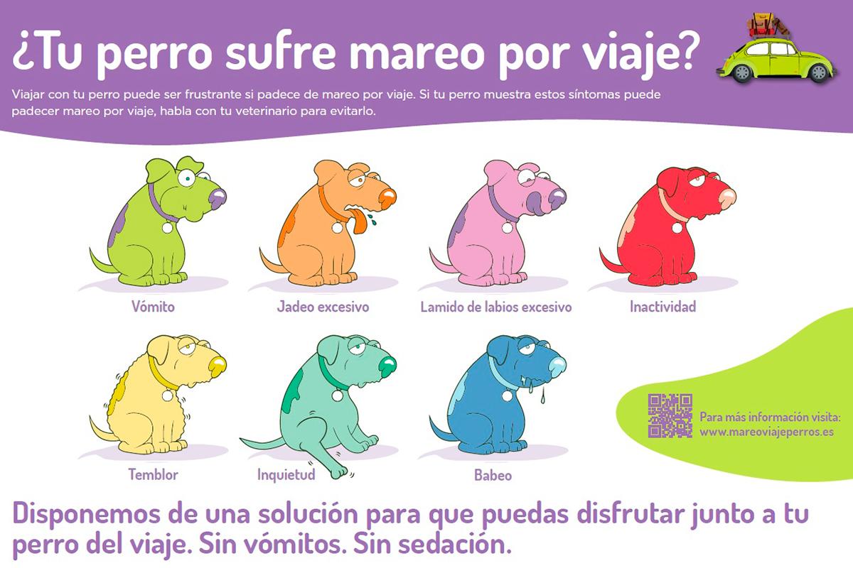 zoetis actualiza la imagen de su campaa de concienciacin sobre el mareo por viaje en perros