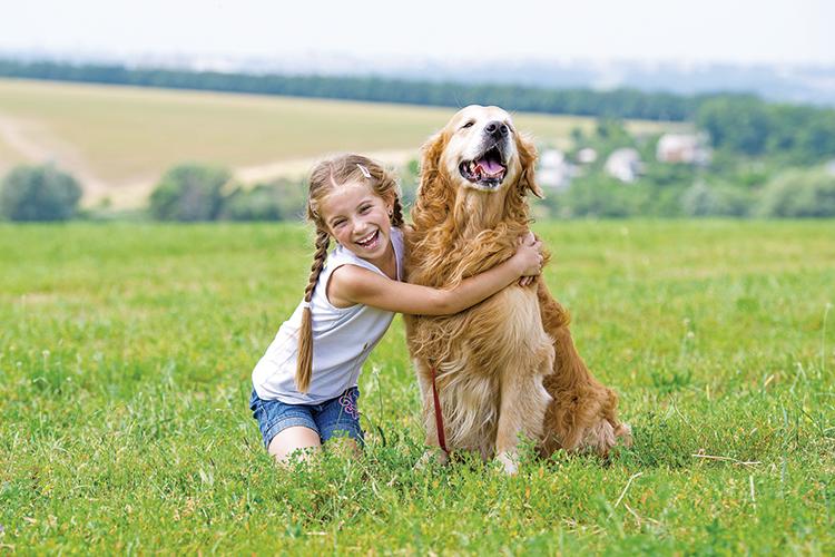 conoces-los-beneficios-del-canamo-para-las-mascotas
