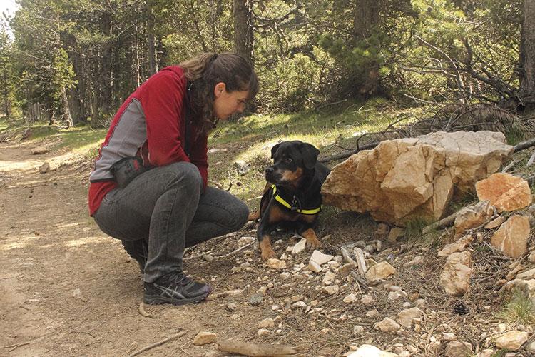 un-perro-de-asistencia-sale-uno-entre-un-millon-porque-se-le-exigen