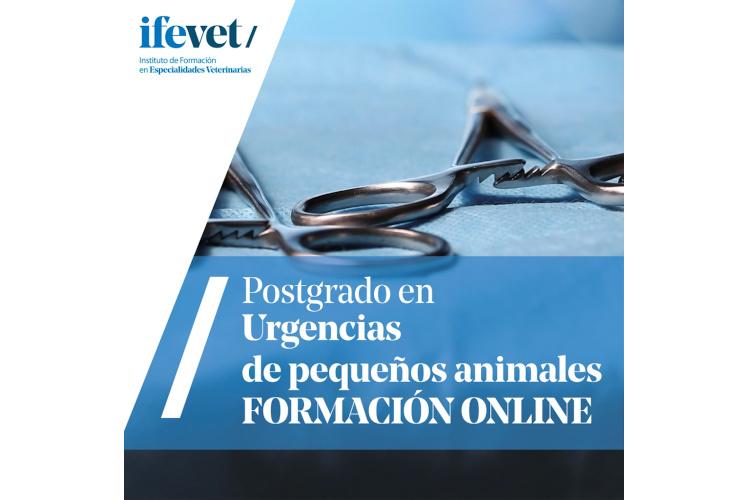 ifevet-lanza-su-postgrado-de-urgencias-de-pequenos-animales-en-format