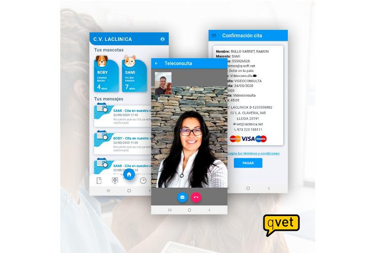 qvet-la-app-de-teleasistencia-veterinaria-para-garantizar-el-bienesta