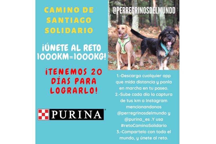 purina-y-perregrinos-del-mundo-lanzan-una-iniciativa-solidaria-a-favor