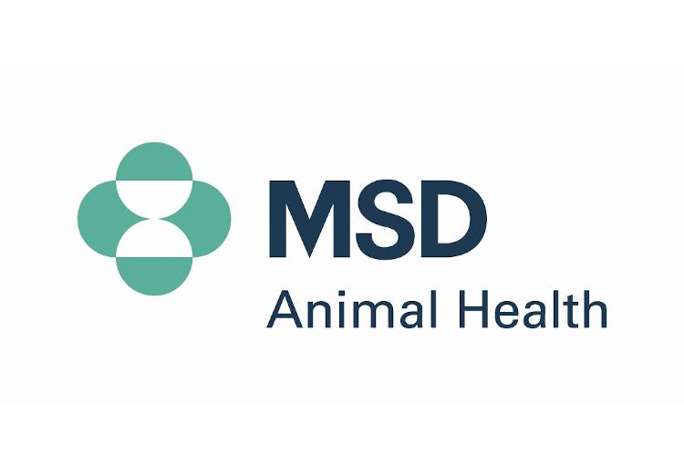 msd-animal-health-promueve-la-semana-de-la-lucha-frente-a-la-leishmani