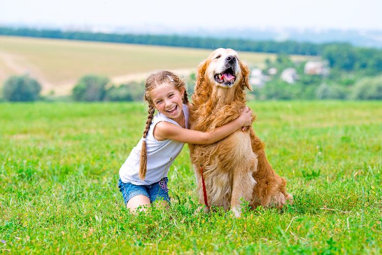 tener-un-perro-en-casa-es-positivo-para-el-desarrollo-socioemocional-d