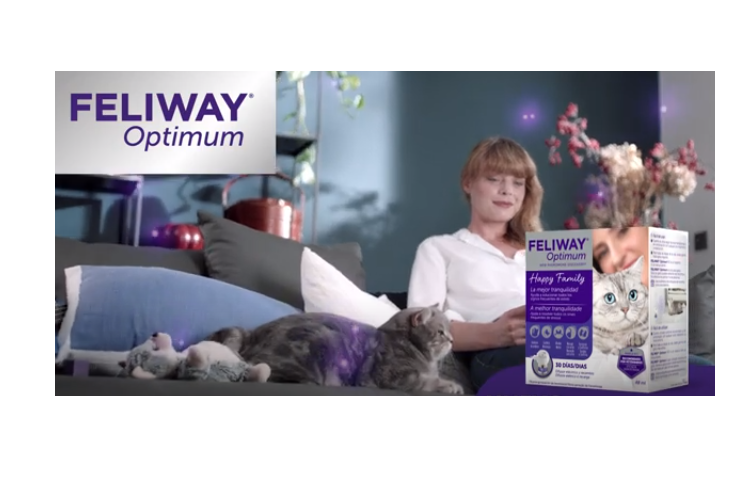 disponible-el-nuevo-feliway-optimum-de-ceva-salud-animal