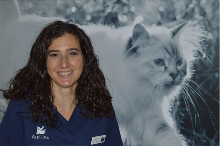 un-5-de-los-gatos-podrian-vivir-con-el-llamado-sida-felino-el-virus