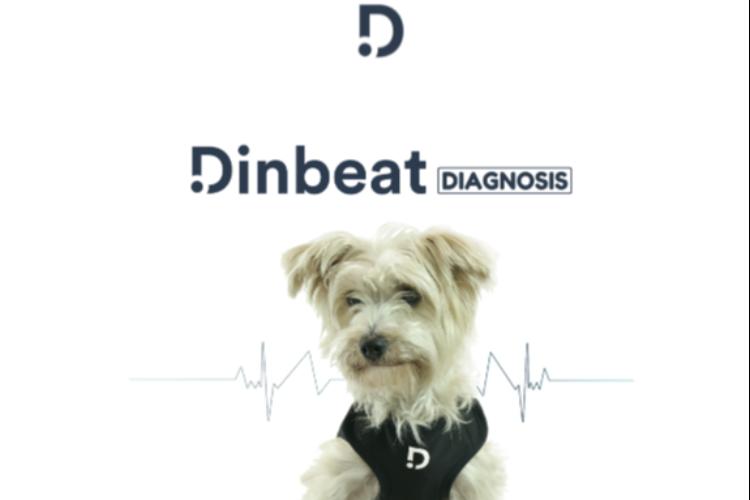 dinbeat-y-diagnosfera-se-unen-para-ofrecer-el-primer-servicio-de-cardi