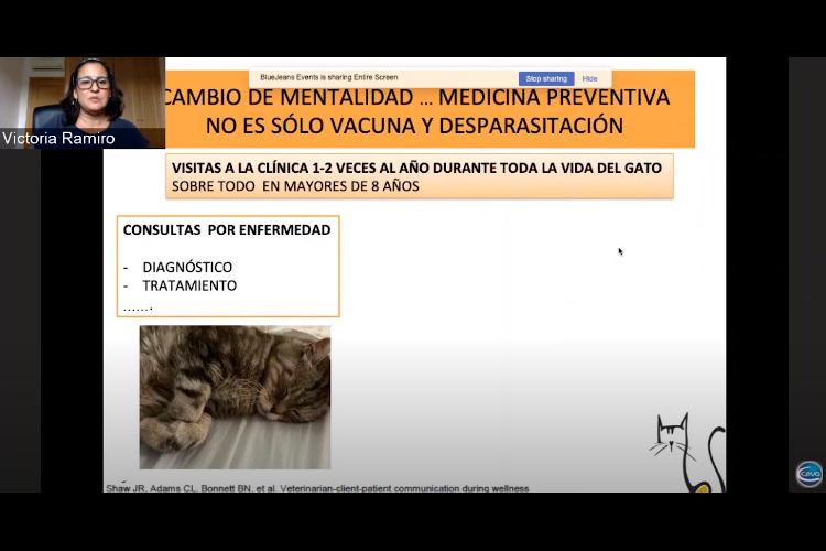 ceva-salud-animal-organiza-las-conferencias-virtuales-cat-sessions-co