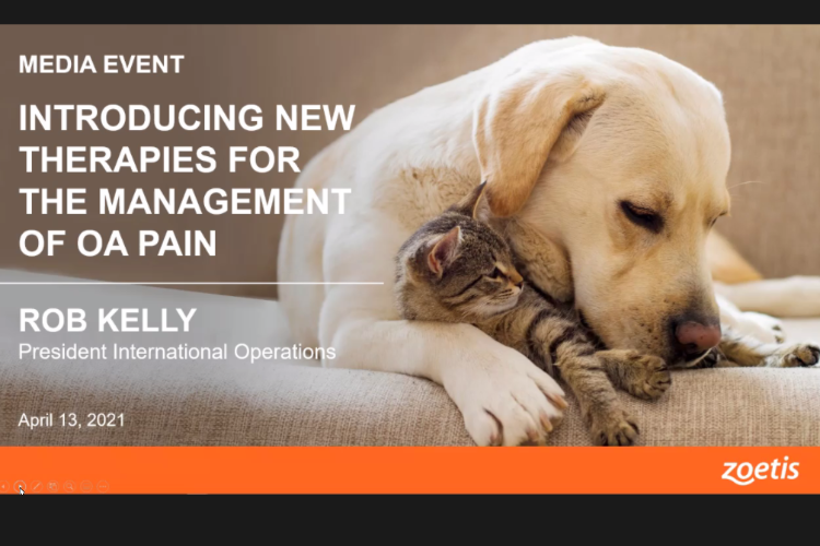 zoetis-da-un-paso-mas-en-el-tratamiento-de-la-osteoartritis-en-perros