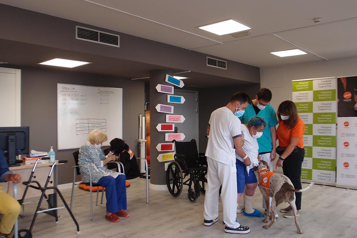primer-programa-de-terapia-asistida-con-perros-para-pacientes-de-una-u