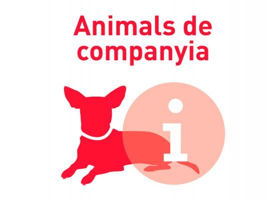 el ayuntamiento de lacutehospitalet intensifica el control de las conductas inciacutevicas de los propietarios de animales