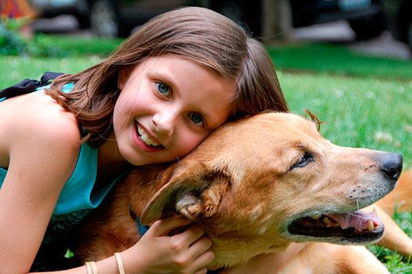 los beneficios para la salud con la interaccioacuten entre personas y animales