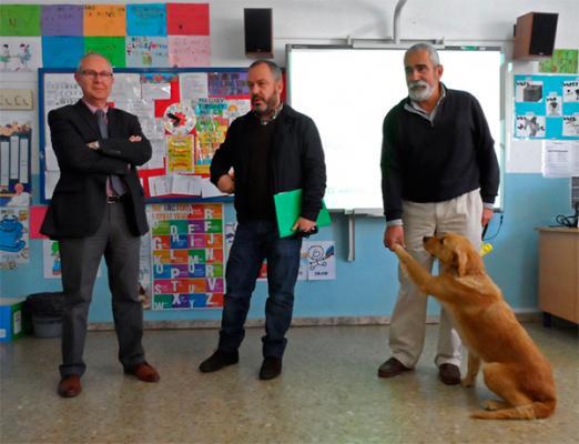 la caacutetedra externa de bienestar animal pone en marcha la iii campantildea escolar quotanimales de compantildeiacuteaquot