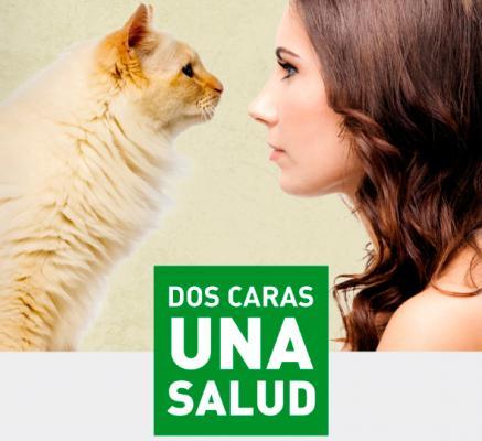 quotdos caras una salud lo que le ocurra a eacutel te afecta a tiquot la nueva campantildea de los colegios veterinarios andaluces
