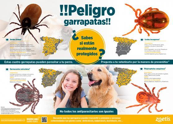 campantildea de zoetis sobre las garrapatas como vectores de importantes zoonosis