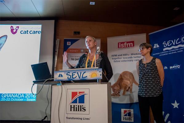 las claves del simposio de medicina felina de isfm gemfe y hillacutes pet nutrition durante el congreso avepasevc