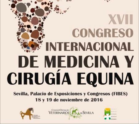 el congreso internacional de medicina y cirugiacutea equina pondraacute el foco en la rehabilitacioacuten del caballo deportivo