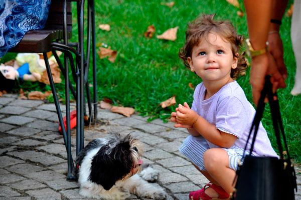 El contacto temprano con perros está asociado a la reducción del riesgo de asma