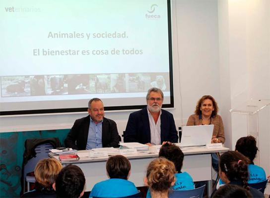 COVLP: Gran Canaria es uno de los lugares de España donde más se abandonan animales domésticos y mascotas