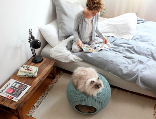 Cozy Pet Knit de Curver, la mejor solución para nuestros amigos de cuatro patas
