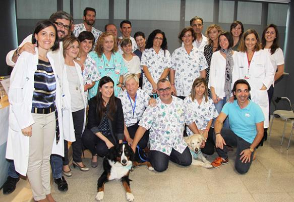 eacutexito de la fase piloto del proyecto de voluntariado con perros de asistencia en oncologiacutea pediaacutetrica de la fe
