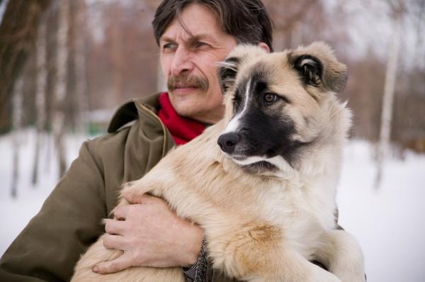 la evolucioacuten geneacutetica de los perros les permite comunicarse con los humanos