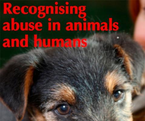 existen interrelaciones entre el abuso de nintildeos adultos y animales vulnerables