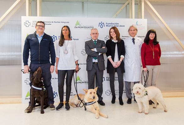 el hospital teresa herrera de a coruntildea apuesta por terapias asistidas con perros para nintildeos