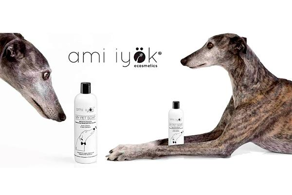 ami iyoumlk reivindica la vida del galgo con my pet soap